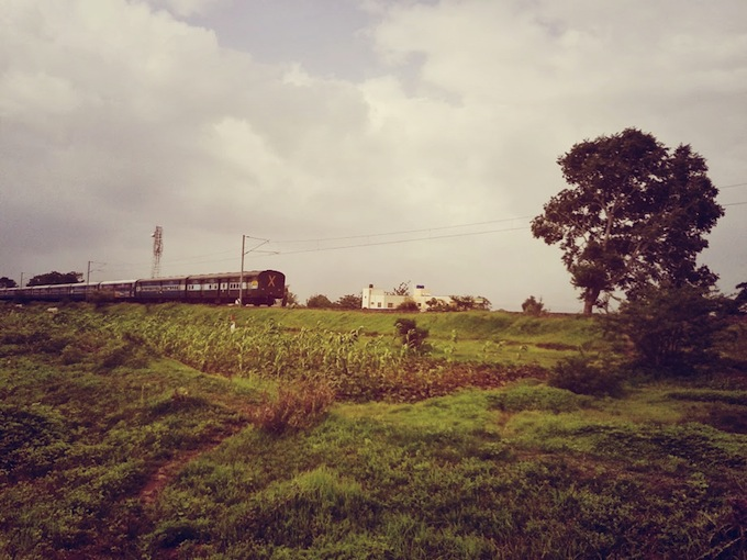 train india field