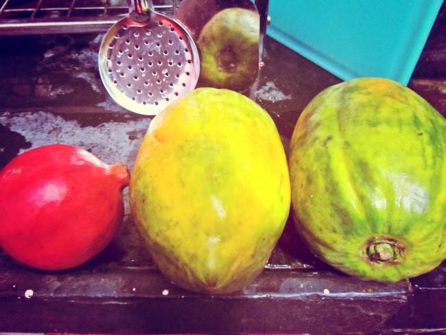 papaya pomegranate