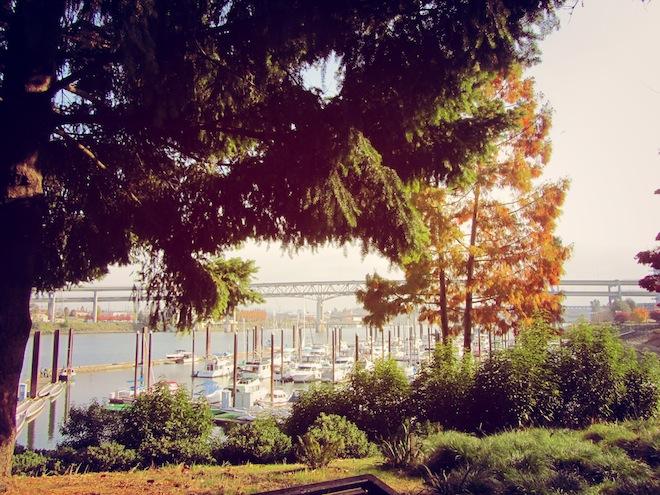 portland waterfront9