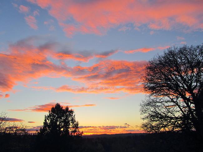 portland sunset