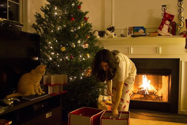 2012christmas1