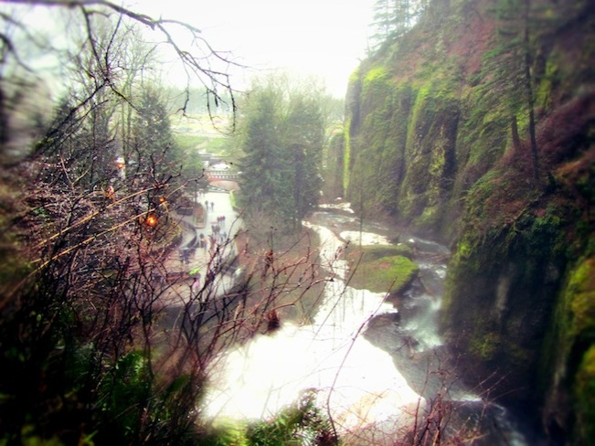 multnomah falls oregon12