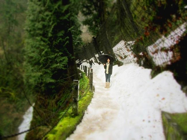 multnomah falls oregon13