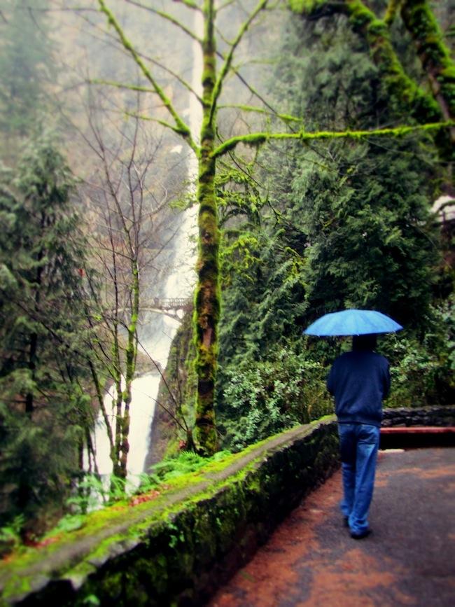 multnomah falls oregon2