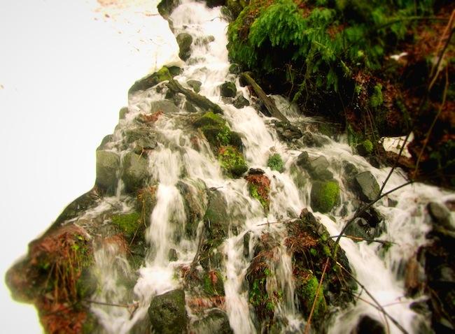multnomah falls oregon9