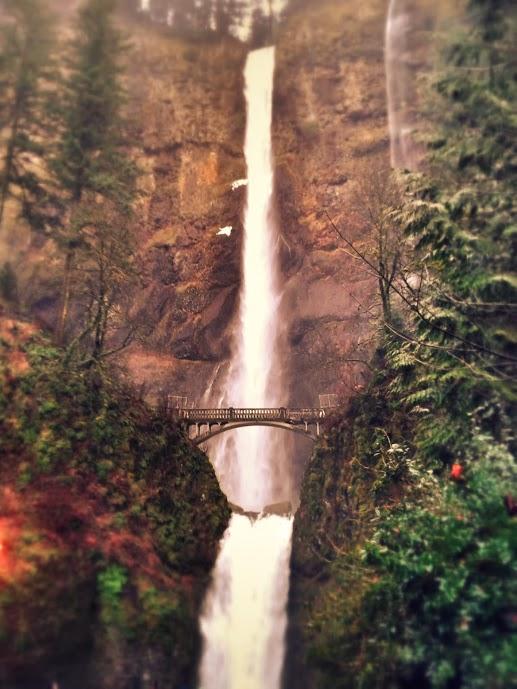 multnomah falls14