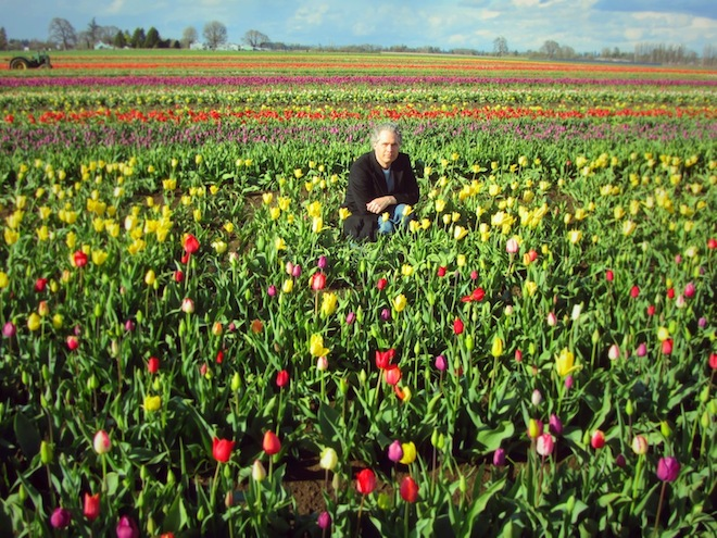 tulip farm oregon josh2