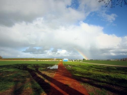 The path to the farm and a rainbow.