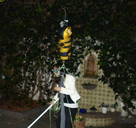 That would be me, blindfolded, sprayed with silly string, underneath a bee piñata. 2008