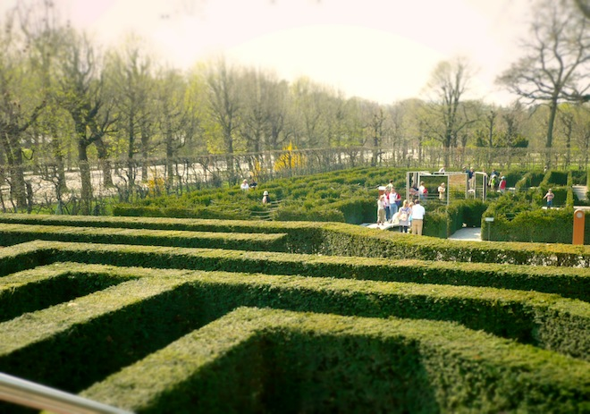 vienna labyrinth