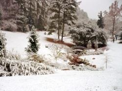 duke gardens durham snow2