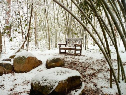 duke gardens durham snow6