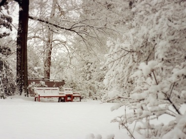 duke gardens durham snow7
