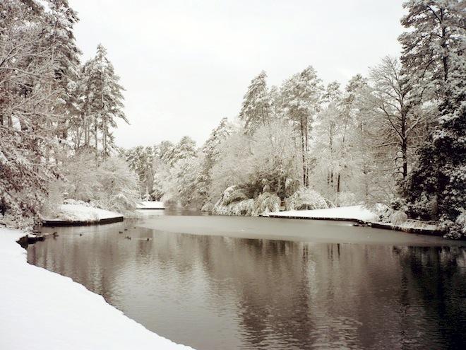 duke gardens durham snow9