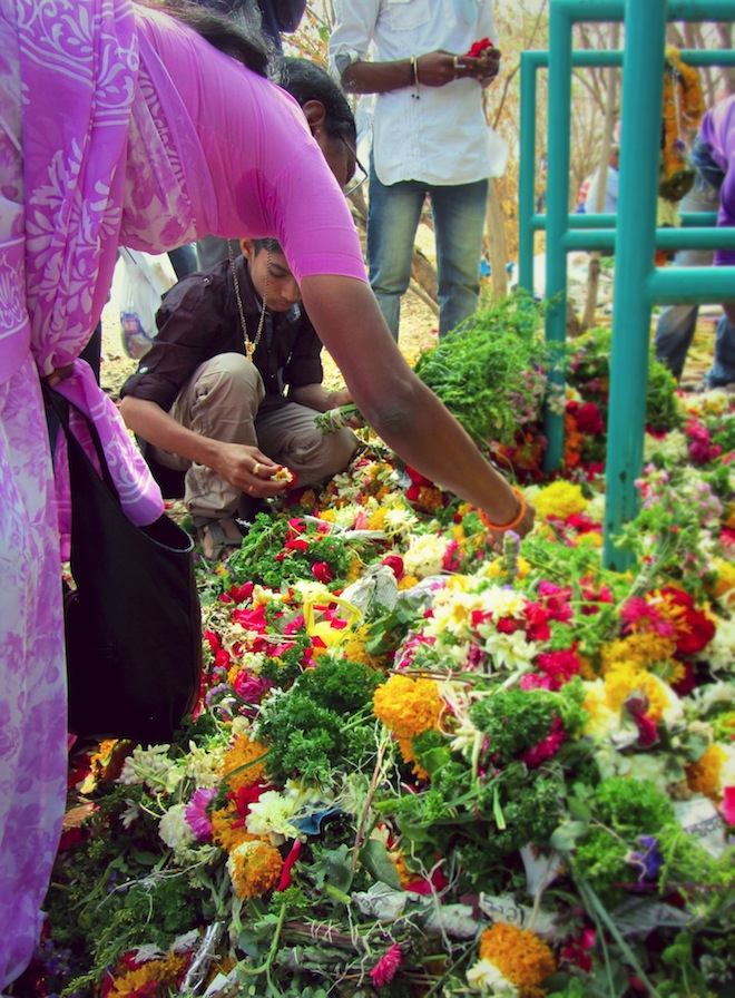 Gathering flowers to offer to God in India.