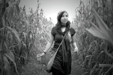 Fields in India