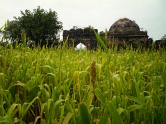 king ahmed tomb india3