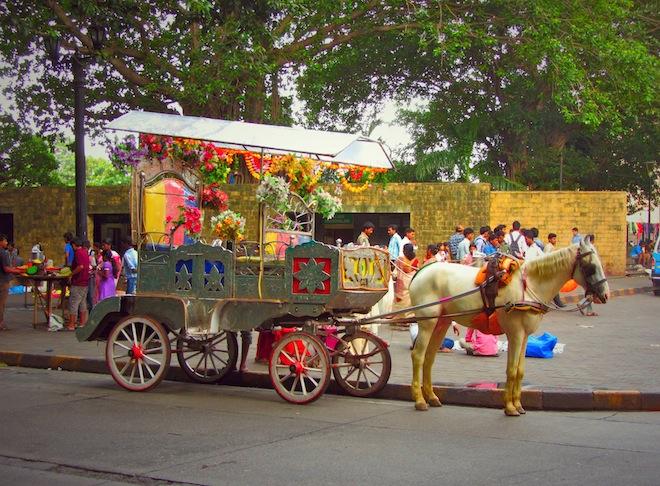 mumbai india horse carriage