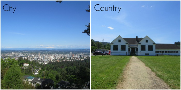 city country collage