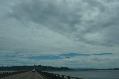 astoria bridge15