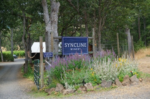 syncline winery washington