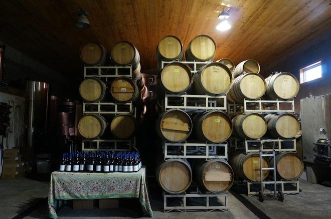 syncline winery washington5