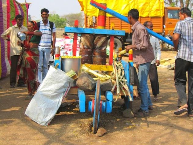 sugarcane india3