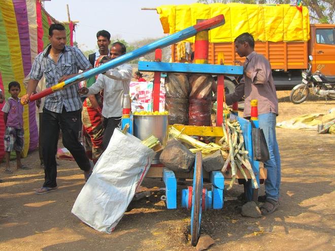 sugarcane india4