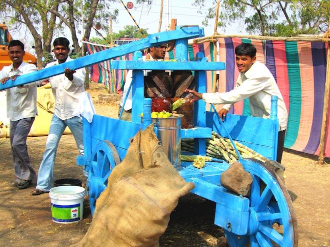 sugarcane india9