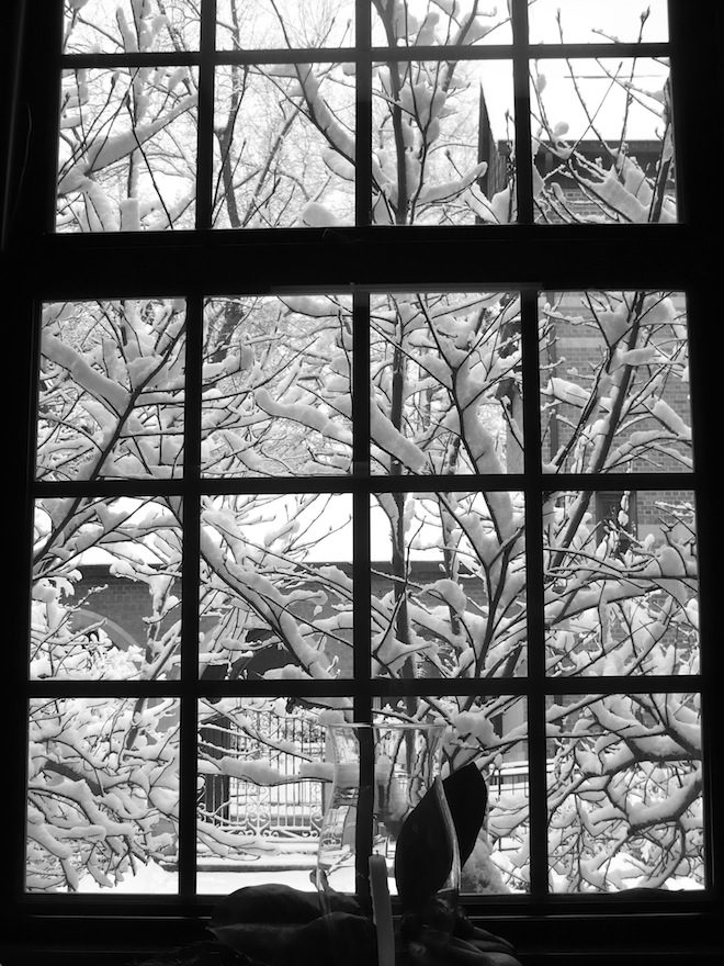 The silhouette of a window on a snowy day in Durham, NC.