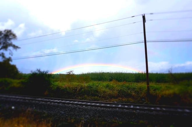 rainbowastoria