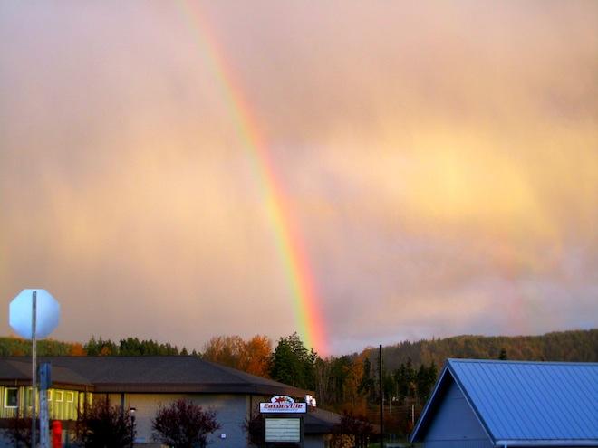 rainbowwashington