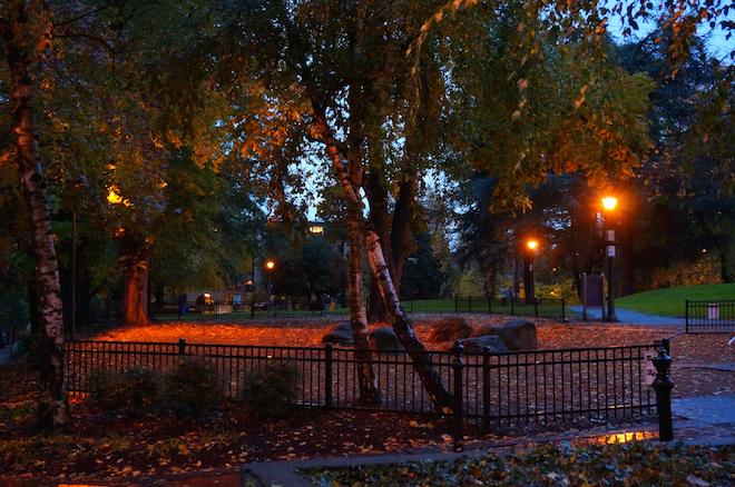 portland night park1