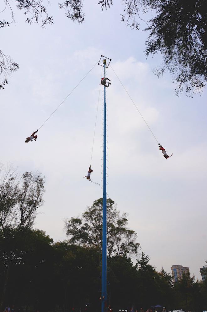 voladores mexico1