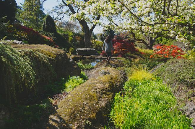 abkhazi garden victoria bc15