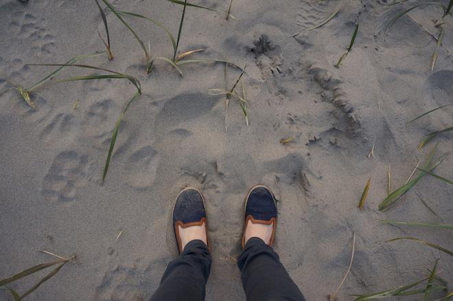 long beach 06635