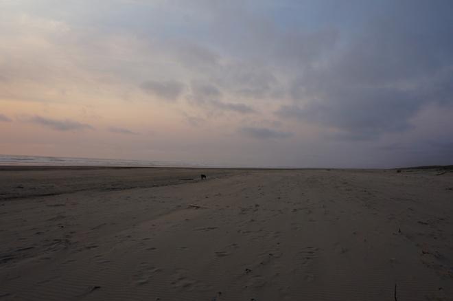 long beach 06643