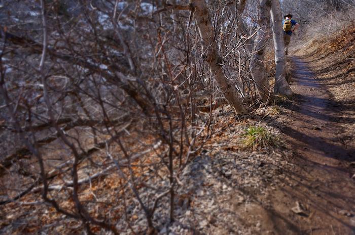 wind cave trail utah18